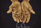 Ice-Prince-Handwork@halmblog