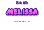 Download Instrumental - Shatta Wale – Melissa