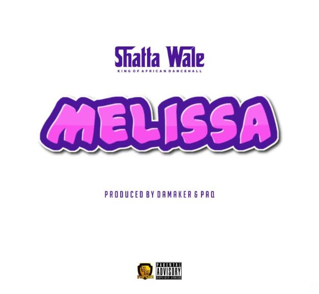 Download Instrumental - Shatta Wale – Melissa