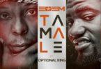 Edem - Tamale Ft Optional King mp3 download