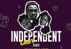 Yaw Berk - Independent Lady (Remix) Ft Kelvyn Boy x MzVee