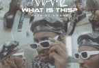 Kwamz – What Is This mp3 download