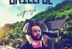 Squash – Skillful (Remix) Ft Vybz Kartel