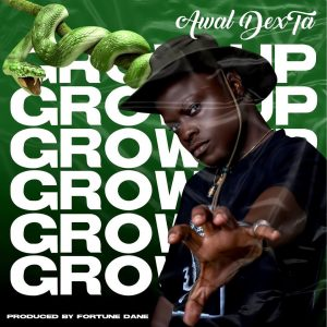 Awal - Grow Up (Prod. By Fortune Dane)