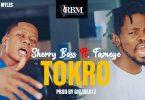 Sherry Boss - Tokro Ft Fameye (Prod. by GigzBeatz)