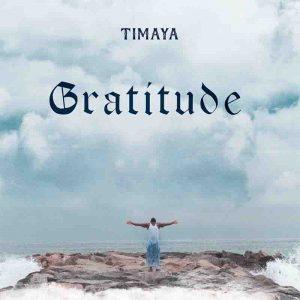 Timaya - The Mood (Prod. by Chillz)