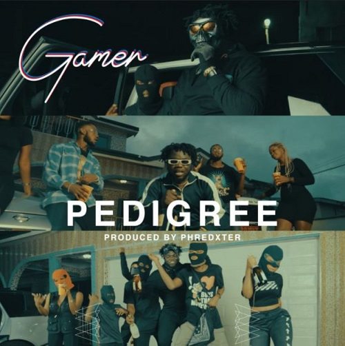 Gamer Pedigree