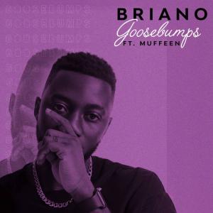 Briano – Goosebumps ft. Muffeen