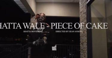 shatta wale piece of cake video