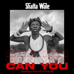 Can You by Shatta Wale