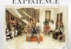 Joe Mettle - The Experience Album