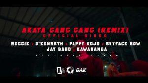 Reggie - Akata Gang Gang Remix Video
