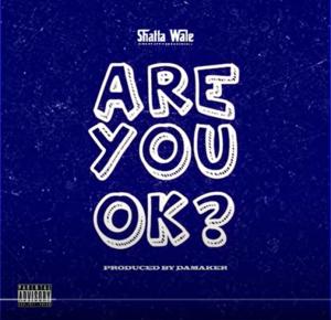 Shatta Wale - Are You Ok?