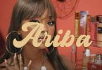 Ariba Video by Stonebwoy Ft Focalistic